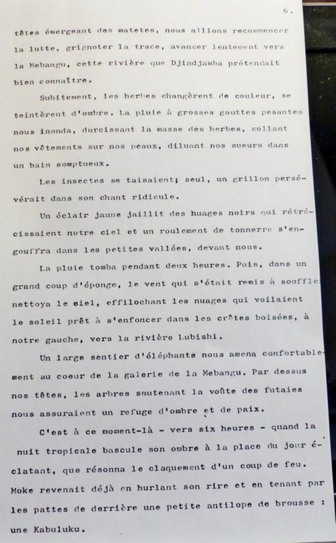 29.09.2014 MILITIS 64 pages Les caillous de la brousse 006.JPG